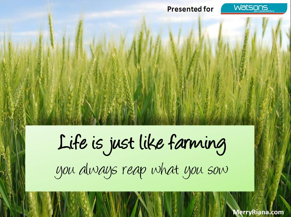 Life is just like farming